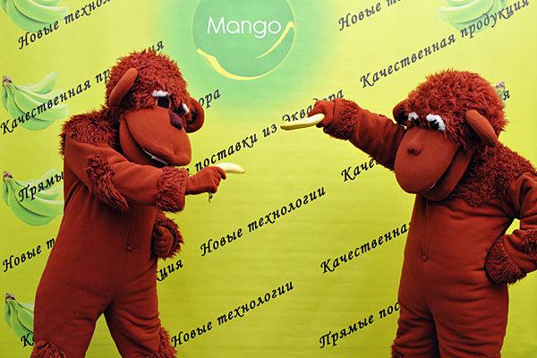 Презентация по открытию новых камер дозаривания бананов для ООО «МАНГО»